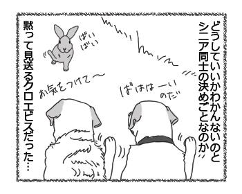 羊の国のラブラドール絵日記シニア!!「シニアの決めごと」4