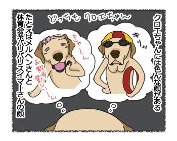 羊の国のラブラドール絵日記シニア!!「色んな顔」4コマ1