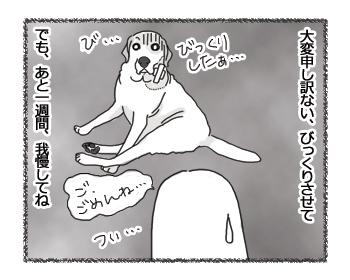 羊の国のラブラドール絵日記シニア!!「かいちゃダメ!」3
