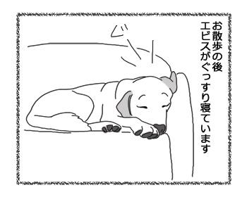 羊の国のラブラドール絵日記シニア!!「伊賀か甲賀か」4コマ1
