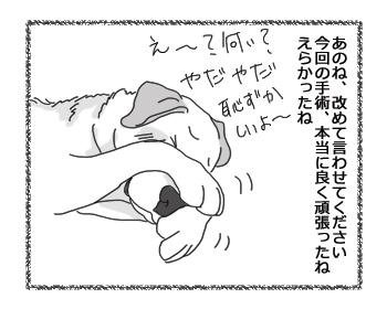 羊の国のラブラドール絵日記シニア!!「改めて」2