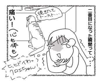 羊の国のラブラドール絵日記シニア!!「クロエちゃんの一番」4