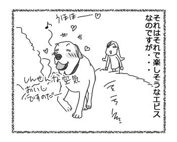羊の国のラブラドール絵日記シニア!!お散歩ソロ活動3
