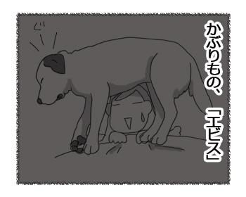 羊の国のラブラドール絵日記シニア!!「かぶりもの」4