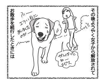 羊の国のラブラドール絵日記シニア!!「残量わずか」3