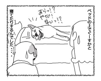 羊の国のラブラドール絵日記シニア!!「そうこなくっちゃ!」5