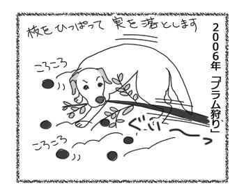 羊の国のラブラドール絵日記シニア!!「フルーツ・ピッカー」1