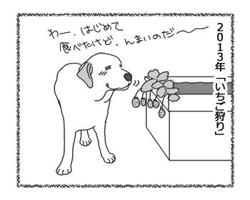 羊の国のラブラドール絵日記シニア!!「フルーツ・ピッカー」3