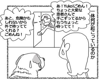 羊の国のラブラドール絵日記シニア!!「はずれ!」2