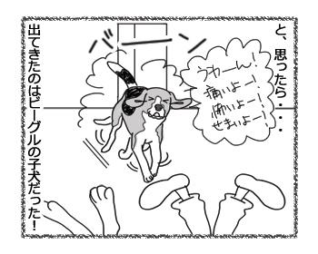 羊の国のラブラドール絵日記シニア!!「はずれ!」4