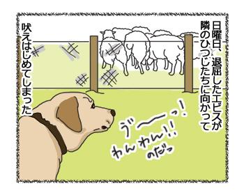 羊の国のラブラドール絵日記シニア!!「ファームドッグへの道のりPart3」1