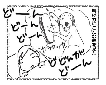 羊の国のラブラドール絵日記シニア!!「ペットボトル鼓笛隊、再び!」1