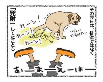 羊の国のラブラドール絵日記シニア!!「犬種ならでは?」7