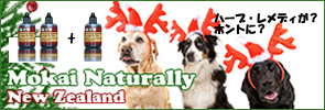 2013ChristmasBannerPet