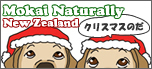 2013ChristmasBanner_mini