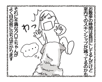 羊の国のラブラドール絵日記シニア!!「ダンシングゆうさん」2