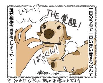 羊の国のラブラドール絵日記シニア!!「女子の魅力は」4コマ4b