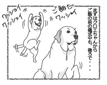 羊の国のラブラドール絵日記シニア!!「ご飯だワッショイ!」1