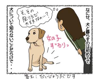 羊の国のラブラドール絵日記シニア!!「Let's talk about 保険!」3