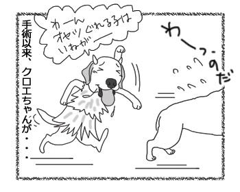 羊の国のラブラドール絵日記シニア!!「いねがぁ~」2