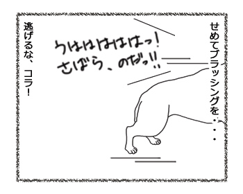 羊の国のラブラドール絵日記シニア!!「姉ちゃんのためなら」4
