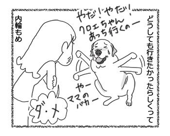 羊の国のラブラドール絵日記シニア!!「可愛い意地っ張り」2