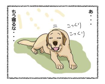 羊の国のラブラドール絵日記シニア!!「わからない乙女心」2