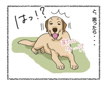 羊の国のラブラドール絵日記シニア!!「わからない乙女心」3