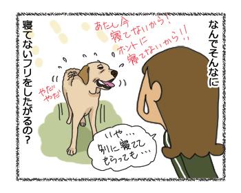 羊の国のラブラドール絵日記シニア!!「わからない乙女心」4