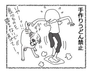 羊の国のラブラドール絵日記シニア!!「クロエ禁止事項」4