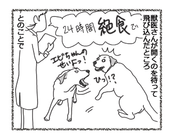 羊の国のラブラドール絵日記シニア!!「一難去って?」3