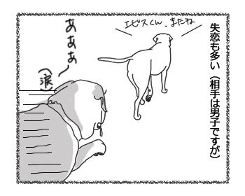 羊の国のラブラドール絵日記シニア!!「エビスの先輩風」2