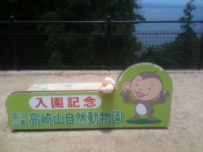 高崎山自然動物園3