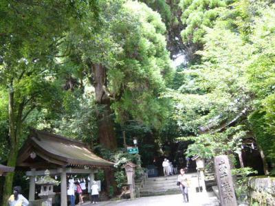 高千穂神社6