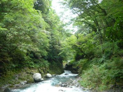 天岩戸神社と天安河原8