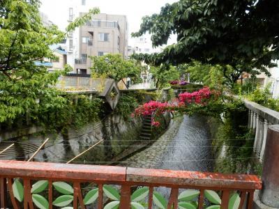熱海~伊豆大島1