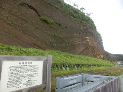 伊豆大島11