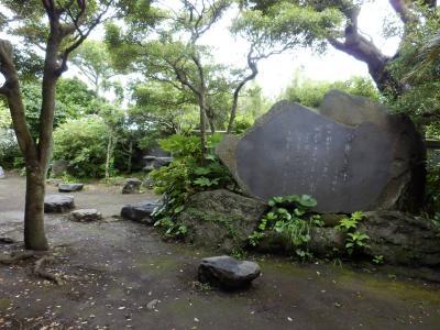 伊豆大島29