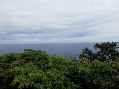 伊豆大島31