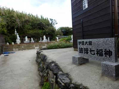 伊豆大島33
