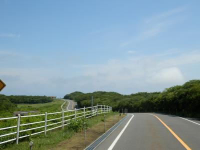 伊豆大島59
