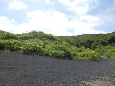伊豆大島62