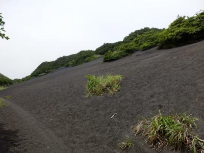 伊豆大島70