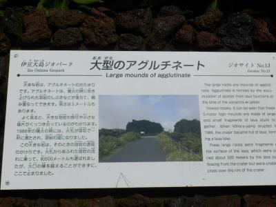 伊豆大島80
