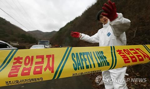 20141125tori-influenza.jpg