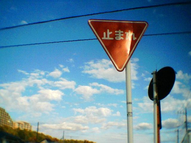 Photo1123007.jpg