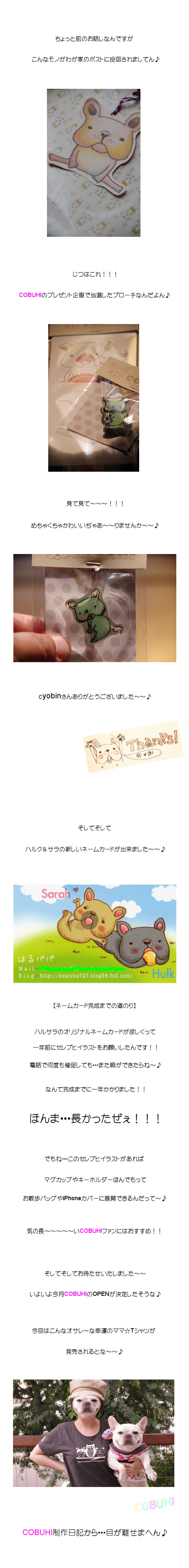 COBUHI☆だぜぇ♪