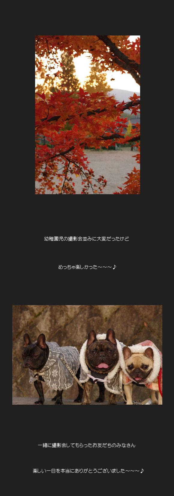 紅葉撮影会F