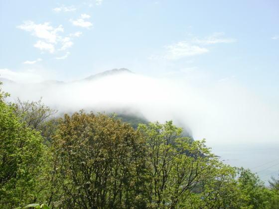 青空に霧がかかっています。