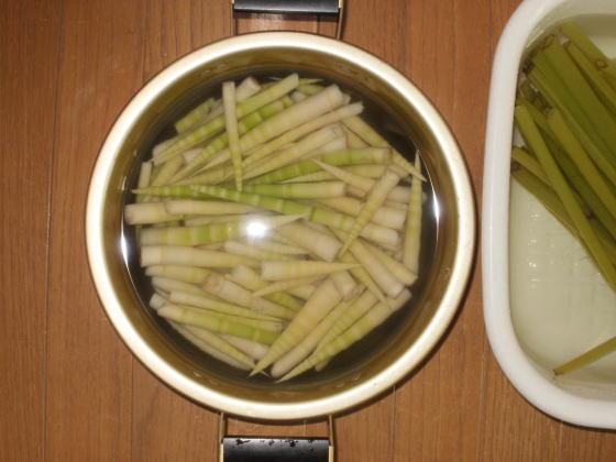 皮をむいて大鍋にひとつ採ることができました。